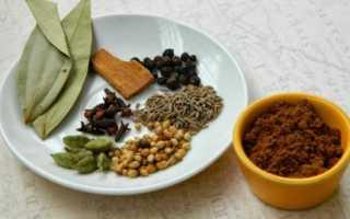 Изысканная приправа индийской кухни «Гарам Масала»