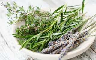 Популярная французская приправы — прованские травы